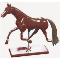 ANIMAL MANIKIN HORSE 40cm