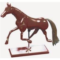 ANIMAL MANIKIN HORSE 50cm