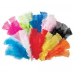 FEATHERS Large 60gm